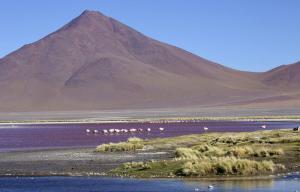 Bolivien - Zu den Ursprüngen Südamerikas