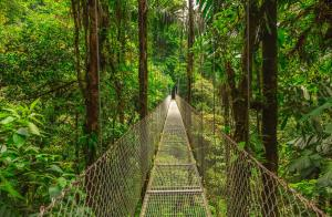 Costa Rica: Impressionen am Pazifik