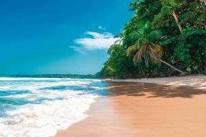 Costa Rica: Impressionen in der Karibik