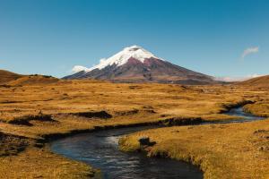 Ecuador & Galapagos: Impressionen