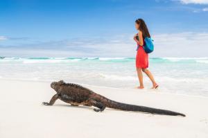 Ecuador • Galapagos - Höhepunkte Ecuadors und Galapagos-Kreuzfahrt