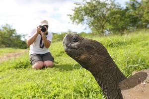 Ecuador • Galapagos - Höhepunkte Ecuadors und Inselhüpfen auf Galapagos