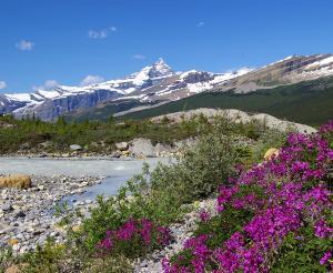 Kanada - Lodge- & Ranchtour: Rocky Mountains bis Pazifik