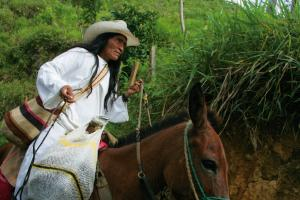 Kolumbien - Von den Anden zur Karibik