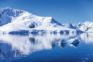 MS HEBRIDEAN SKY - Antarktische Halbinsel - Einzigartige Tierwelt