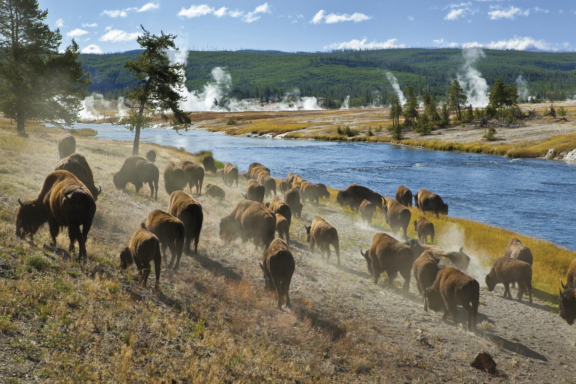 Naturwunder der Rocky Mountains