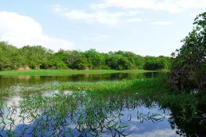 Posada Amazonas  -  Erlebnis Regenwald