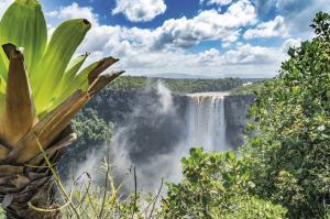Suriname - Guyana - Französisch Guyana Kompakt
