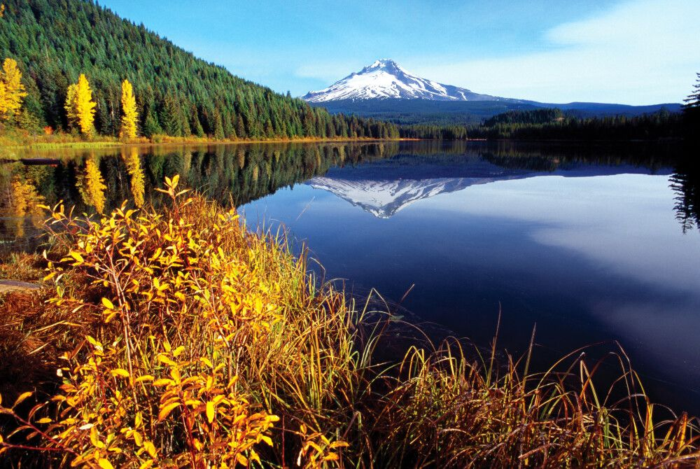 USA | Nordwesten - Pazifik, Baumgiganten und Vulkane