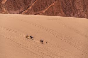 Wüstenzauber Atacama